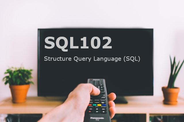 SQL102 / Structured Query Language (SQL) - Tableau Magic